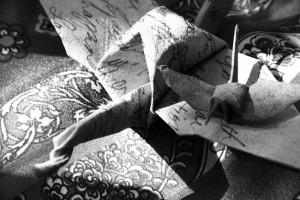 Tina Drakulich's Combat Paper Cranes